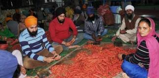 organic Langar