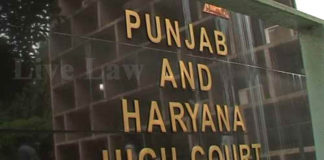 punjab ag sit report