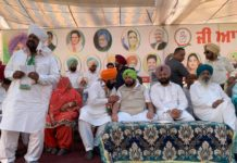 Amarinder will personally campaign